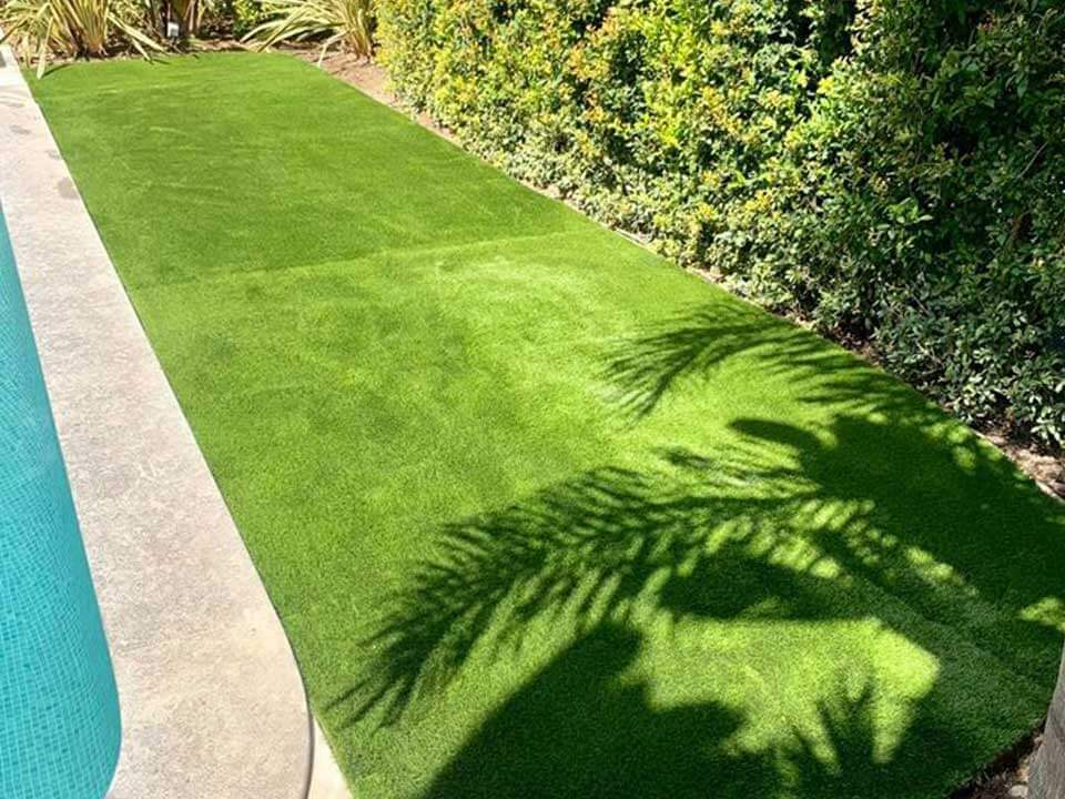 grasshopper-lawns-2020-8